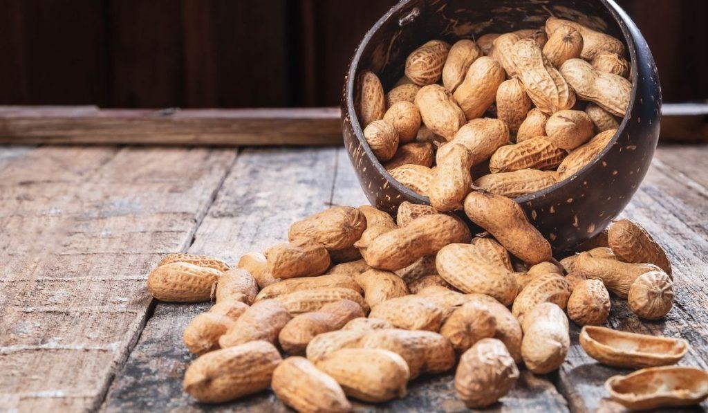 peanuts in a coconut bowl