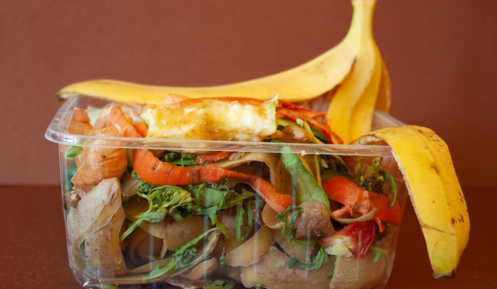 Scrap foods in a transparent container