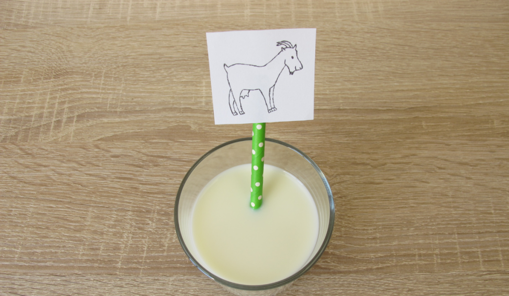 A goats milk with green white polka dots straw and a drawing of a goat.