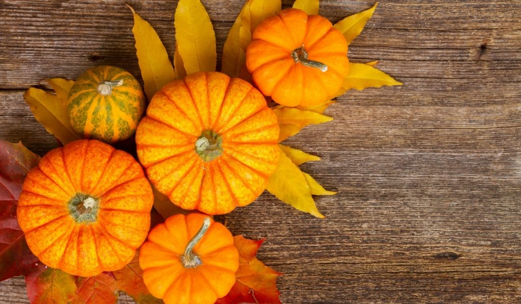 orange pumpkins with orange and red leaves on top of the wooden table